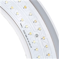 Linkstar Bi-Color LED Ring Lamp Dimbaar RLE-322VC op 230V